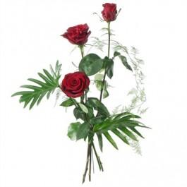 3 Rosen rot - Blumen Bergmann