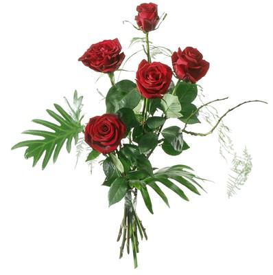 5 Rosen rot - Blumen Bergmann