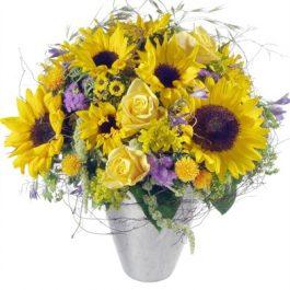 Sonnenschein - Blumen Bergmann Bolligen