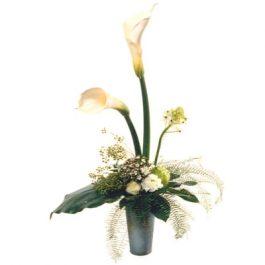 Elegante Callas - Blumen Bergmann