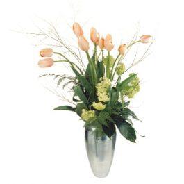 französische Tulpen - Blumen Bergmann