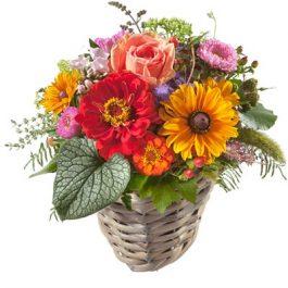kleine Sommerüberraschung - Blumen Bergmann Bolligen