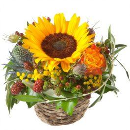 sonniges Küsschen - Blumen Bergmann Bolligen
