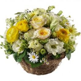 Charmanter Frühlingskorb - Blumen Bergmann