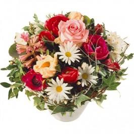 Frühlingsgefühle - Blumen Bergmann