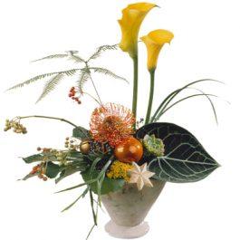Exoten unter sich - Blumen Bergmann