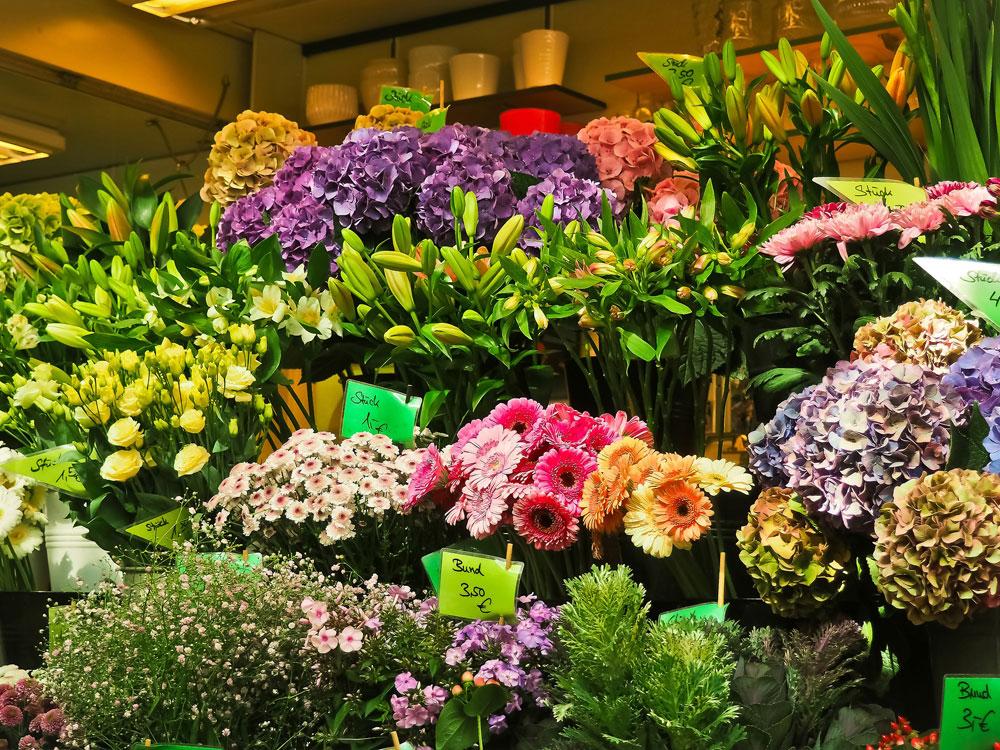Fachberatung - Blumen Bergmann