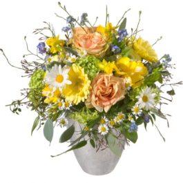 Frühlings-Fee - Blumen Bergmann