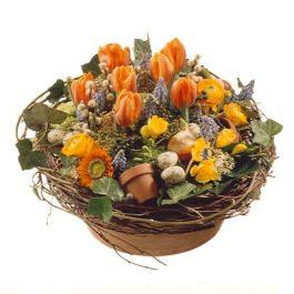 Frühlingsnest - Blumen Bergmann