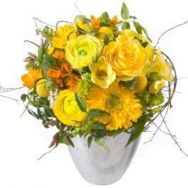 Sonnenschein - Blumen - Bergmann